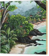 North Coast Tobago Wood Print