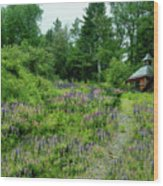 North Country Nod To Monet Wood Print