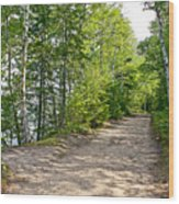 North Country Trail In Pictured Rocks National Lakeshore-michigan  Wood Print