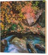 North Creek Fall Foliage Wood Print