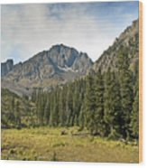 North Face Of Mount Sneffels Above Blaine Basin In The San Juan Mountains Of Colorado Wood Print