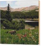 North Fork  Lake Colorado Wood Print