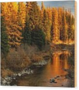 North Fork Yaak River Fall Colors #1 Wood Print