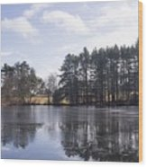 North Hill Marsh Wildlife Sanctuary Wood Print