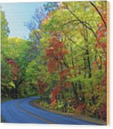 North Of The Folk Art Center In Fall Wood Print