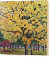 North Savannah Poui Wood Print