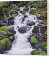 North Umpqua Wild And Scenic River Wood Print