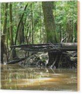 North West Florida Swamp Wood Print