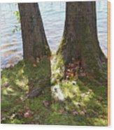North Woods Lake One Wood Print