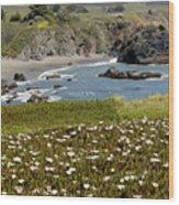 Northern California Coast Scene Wood Print
