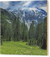 Northern Cascades In Washington State    Mount Ruth Wood Print by Brendan Reals