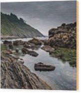 Northern Coast Wood Print
