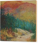 Northern Essence  Wood Print