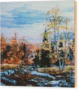 Northern Gold Wood Print