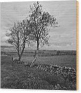 Northern Ireland 18 Wood Print