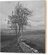 Northern Ireland 19 Wood Print