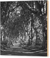Northern Ireland 43 Wood Print