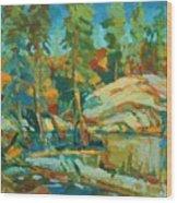 Northern Landscape Wood Print