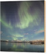 Northern Light Xiv Wood Print