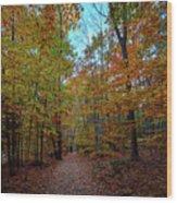 Northern Loop Trail Wood Print