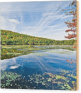 Northern New Jersey Lake Wood Print by Ryan Kelly