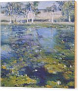 Northern New South Wales Australia 1995  Wood Print