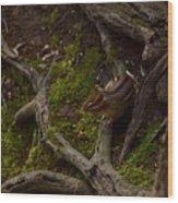 Northern Ohio Chipmunk Wood Print