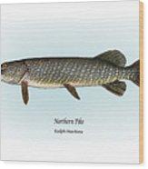 Northern Pike Wood Print