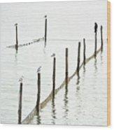Northern Sea Landscape Wood Print