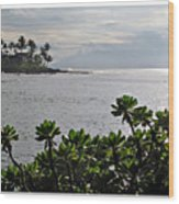 Northwest Maui Bay Wood Print