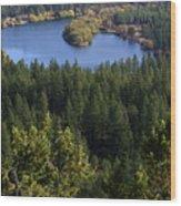Northwest Splendor Wood Print