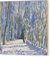Norwalk River Valley Trail Wood Print