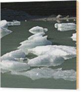 Norway, Iceberg Floating On Water Wood Print