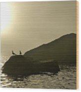 Norway, Tromso, Silhouette Of Pair Wood Print by Keenpress