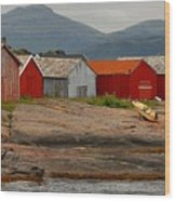 Norwegian Coast No. 3 Wood Print