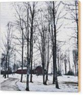 Norwegian Forest Wood Print