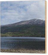 Norwegian Lake Wood Print