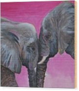 Nose To Nose In Pink Wood Print