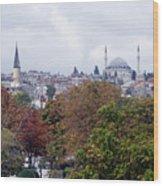 Nostalgia Of The Autumn In Istanbul Wood Print