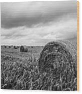 Nostalgia - Hay Bales In Field In Black And White Wood Print
