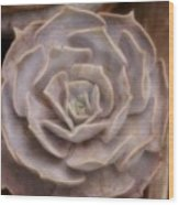 Not A Rose Wood Print