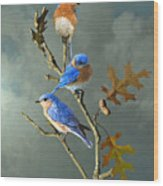 Nothing But Bluebirds Wood Print