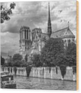 Notre Dame And Seine Wood Print