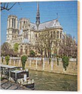 Notre Dame And The Seine Wood Print