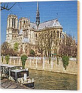 Notre Dame And The Seine Painterly Wood Print