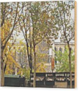 Notre Dame From The Window Wood Print