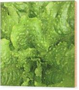 Nourish In Green Wood Print