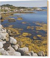 Nova Scotia Seascape Wood Print