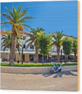 Novalja On Pag Island Palm Waterfront View Wood Print