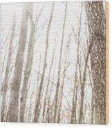 November Comes Wood Print